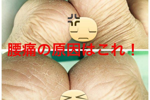 腰の痛みの正体はここ?